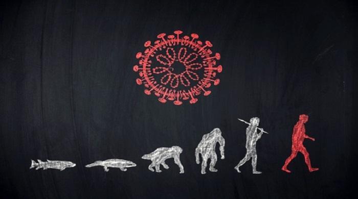 ২০-হাজার-বছর-আগেও-তাণ্ডব-চালিয়েছিল-করোনাভাইরাস!
