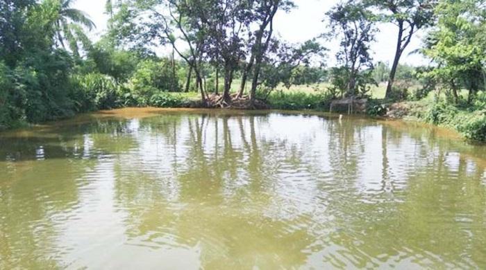 মৌলভীবাজারে-মাছ-ধরা-দেখতে-গিয়ে-প্রাণ-গেল-মামা-ভাগ্নির